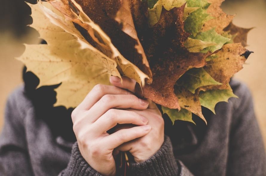 iPratico, il software per la ristorazione e un autunno di soprese!